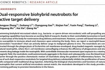 专访|哈工大团队详解微纳机器人如何首次主动靶向脑胶质瘤